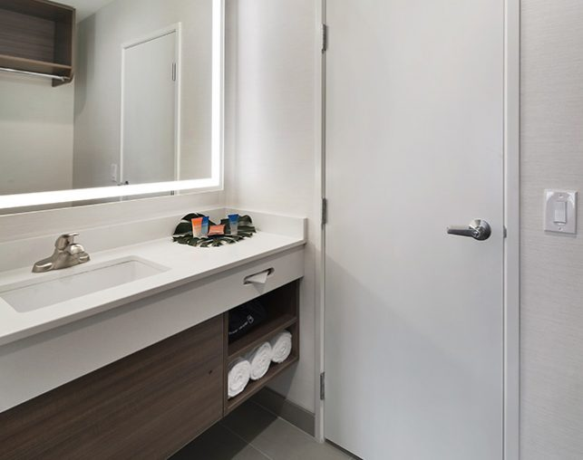 Bathroom Vanity and closet door